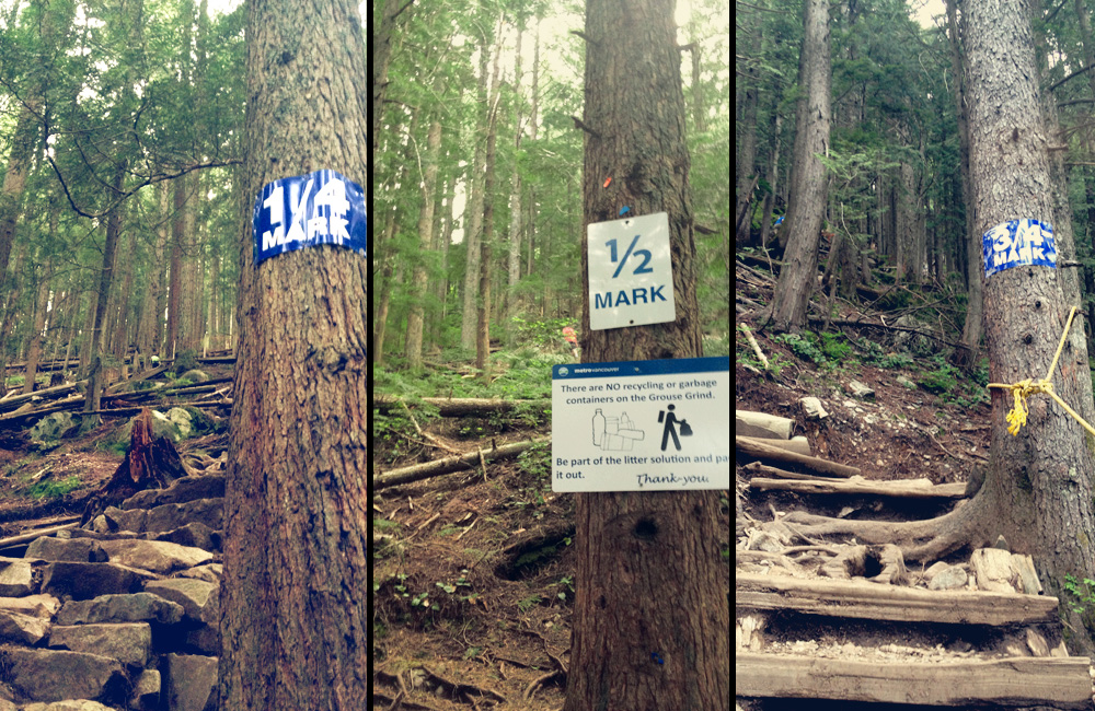 Grouse Grind markers